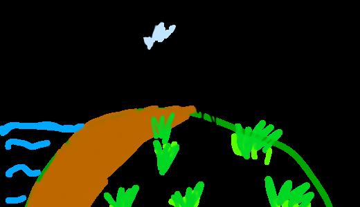 無人島で〇〇してみた!みたいなYoutuberを見て思うこと。